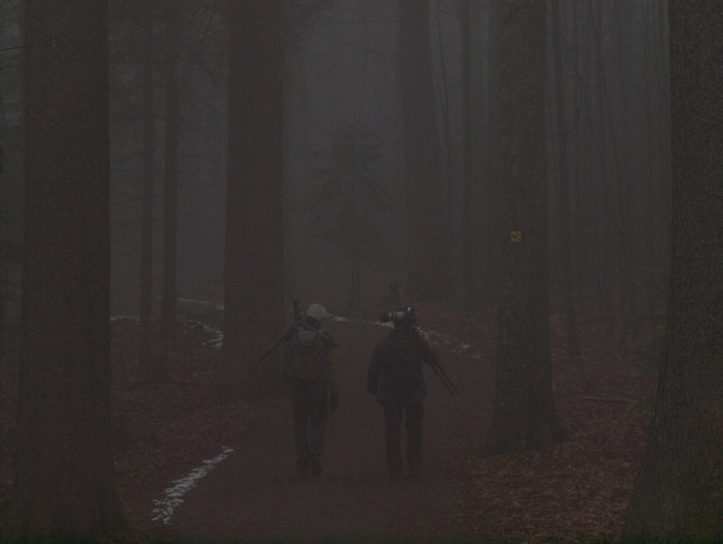 Fellow Photographers in the Fog